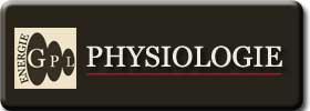 quelques principes de physiologie en cyclisme, réservoirs d'energie